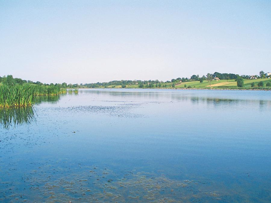 У річку Гнилий Тікич, з якої беруть воду для побутових потреб, скидають промислові відходи кілька підприємств Черкащини. Фото з сайту pro-vincia.com.ua.