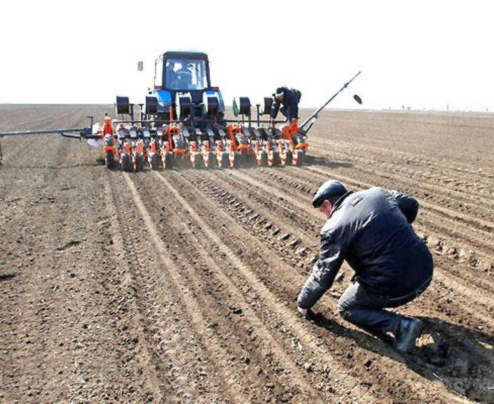 Весна для хліборобів лише початок. Попереду — боротьба за збереження врожаю. Фото з сайту nnm.me