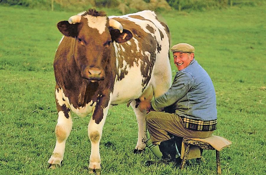 Хозяин с коровой картинка