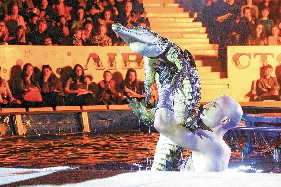 Демонстрація рептилій — один із найдавніших циркових номерів. Фото надане прес-службою Національного цирку
