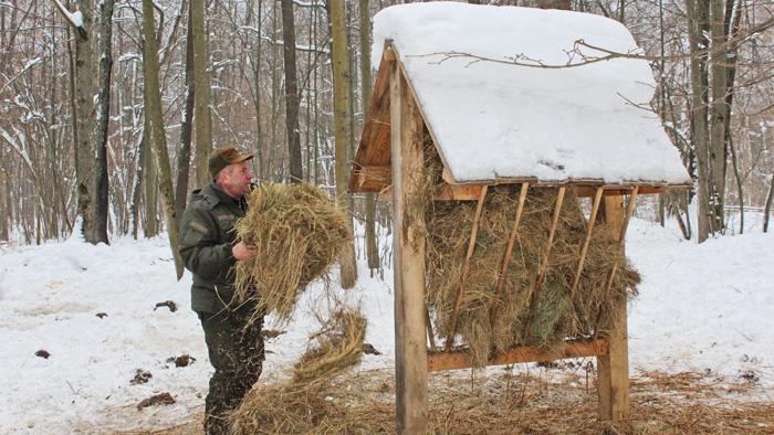 Раціон для звірів розмаїтий. Фото надала прес-служба Сумського обласного управління лісового та мисливського господарства