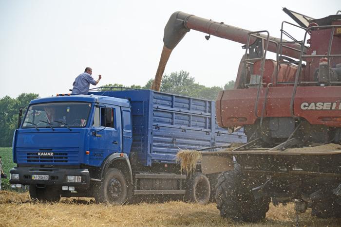 Збирання врожаю — лише одна ланка тривалого ринкового процесу. Фото Володимира ЗАЇКИ