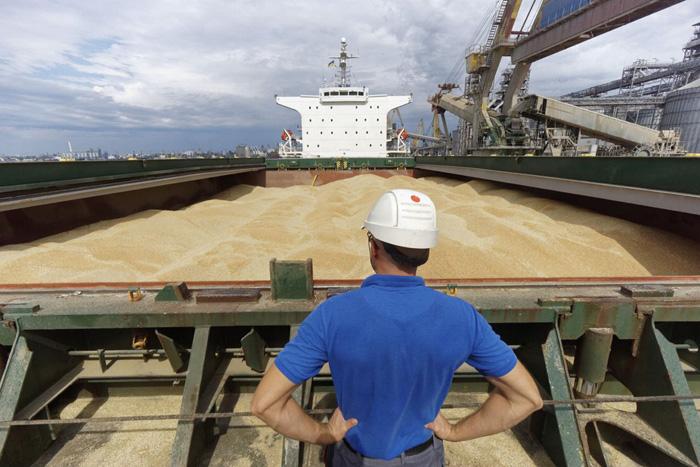 Україна протягом наступного десятиріччя нарощуватиме свій потенціал на світовому ринку зерна. Фото з сайту zikua.tv